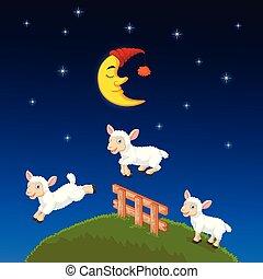 mouton, sur, sauter, trois, barrière