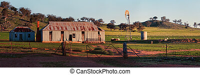mouton, vieil ouest, station, central, nsw