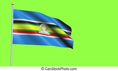 mouvement, drapeau, lent, communauté, africain est