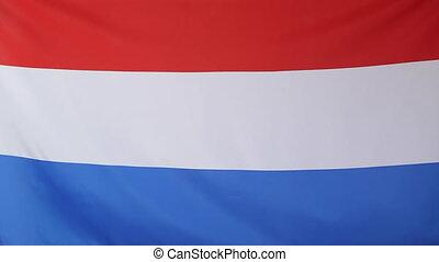 mouvement, drapeau, lent, pays-bas