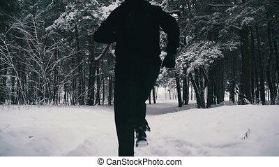 mouvement, forest., jogging, lent, hiver