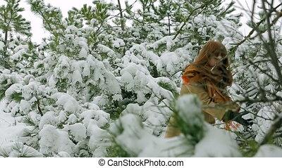 mouvement, forest., lent, hiver