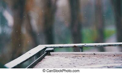 mouvement, gouttes, lent, pluie, rebord fenêtre