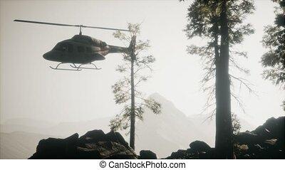 mouvement, hélicoptère, montagne, voler, forêt, lent, extrême