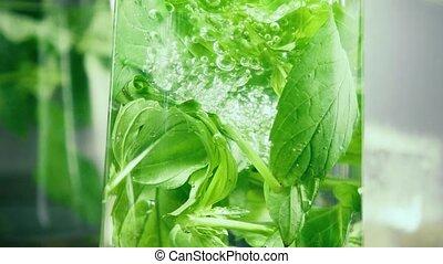 mouvement, lent, feuilles, arrosez verre, bulles, menthe