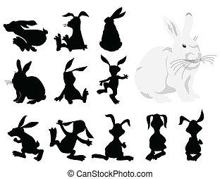 movement., ilustração, silhuetas, vetorial, pretas, coelho
