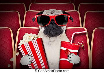 movies, dog