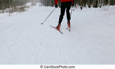Moving along ski-track in the forest