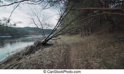 Moving between trees along the river