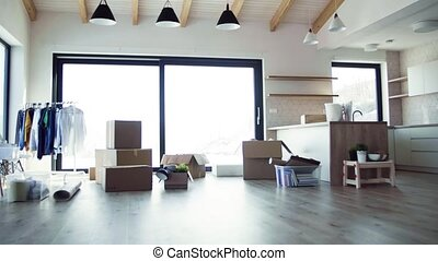 Moving boxes, clothes rack and small furniture on the floor...