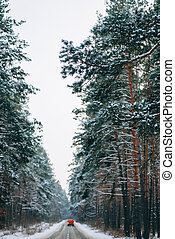 moving car on a forest road in the snow