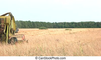 Moving combine on the field. Huge rural area in autumn.
