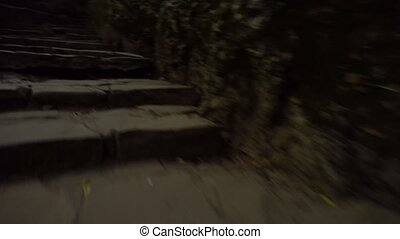 Moving forward by stone stairs in dark forest. Mystical...