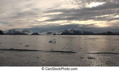 Moving Ice Floes on background snow mountains of Arctic...
