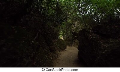 Moving in the dark forest with stones
