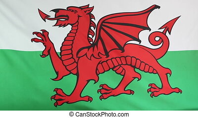 Moving national flag of Wales - Closeup of a fabric national...