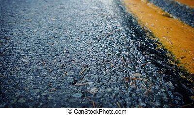 Moving Over Wet Road Closeup