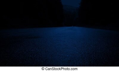 Moving Past Forest Road At Night