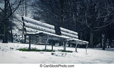 Moving Past Park Benches In Snowfall - Tracking shot passing...