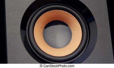 Moving sub-woofer. Speaker part. Closeup