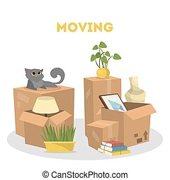 Moving to a new house. Containers and cat on white.