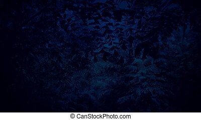 Moving Under Night Jungle Canopy - Moving through the...