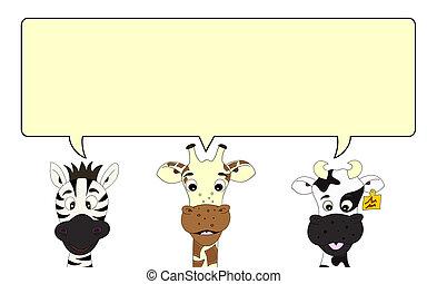 mowa, zebra, żyrafa, bańka, krowa