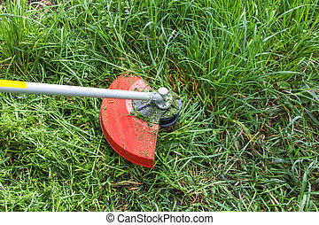 Mowing grass on the lawn closeup