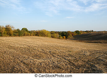 Mown field in the autumn
