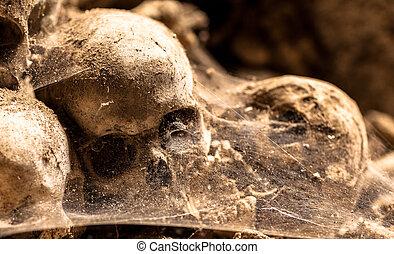 moyen âge, crânes