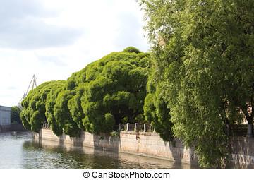 Moyka River Embankment
