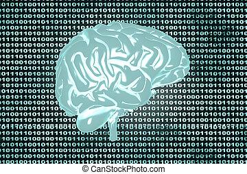 mozek, kód