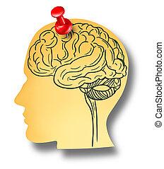 mozek, připomínka