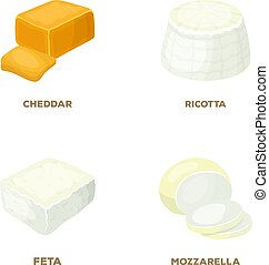 Mozzarella, feta, cheddar, ricotta. Different types of cheese set collection icons in cartoon style vector symbol stock illustration web.