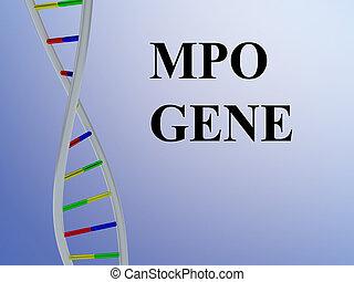 MPO GENE concept - 3D illustration of MPO GENE script with...
