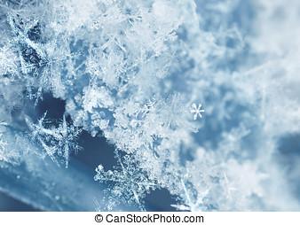 mroźny, śniegowe łuski