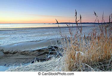 mroźny, wschód słońca, na, swansea, plaża, (uk)