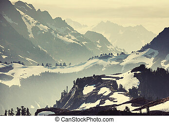 Mt Baker Area - Mt. Baker recreation area, Washington, USA