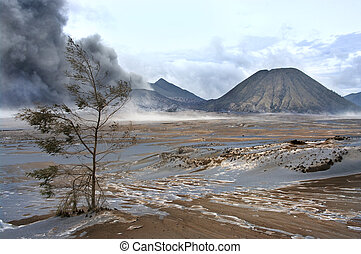 Mt. Bromo volcano,  Indonesia
