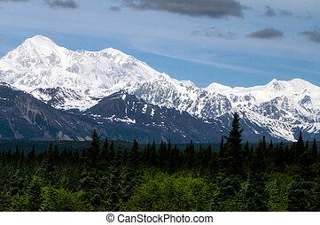 Mt Denali - Mt. Denali from the south along the Alaskan rail...
