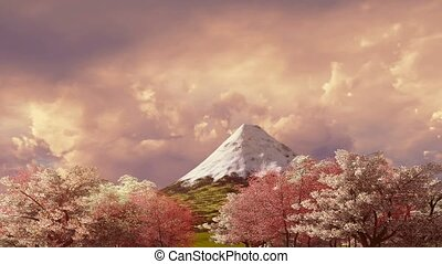 Mt Fuji and cherry blossom at sunset or sunrise