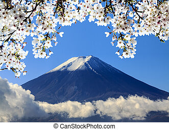 Mt Fuji and Cherry Blossom for adv or others purpose use