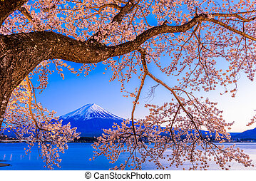 Mt. Fuji and Cherry Blossoms - Kawaguchi Lake, Japan at Mt. ...