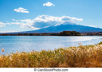 Mt. Fuji and lake