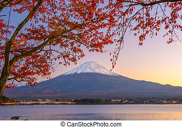 Mt. Fuji in Autumn - Mt. Fuji, Japan at Lake Kawaguchi ...