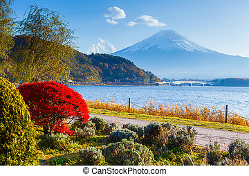 Mt. Fuji in autumn