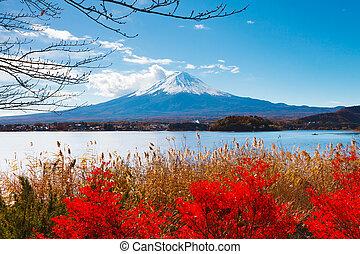 Mt. Fuji in autumn