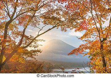 Mt. Fuji, Japan with Fall Foliage