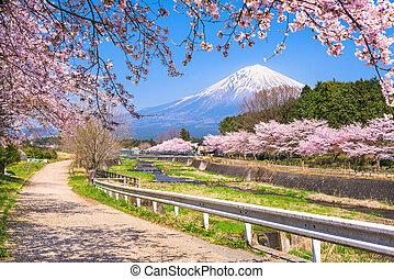 Mt. Fuji viewed from rural Shizuoka Prefecture in spring season
