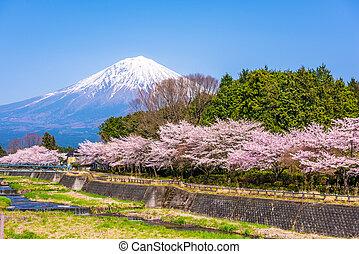 Mt. Fuji viewed from rural Shizuoka Prefecture